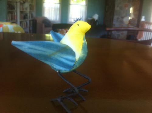 Terri's bird